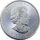 Kanada 8 Dollar Münze 2015 ST Eisbär Jungtier...