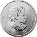 Kanada 8 Dollar Münze 2017 ST Grizzly Bär 1,5...
